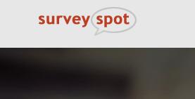I Survey Spot