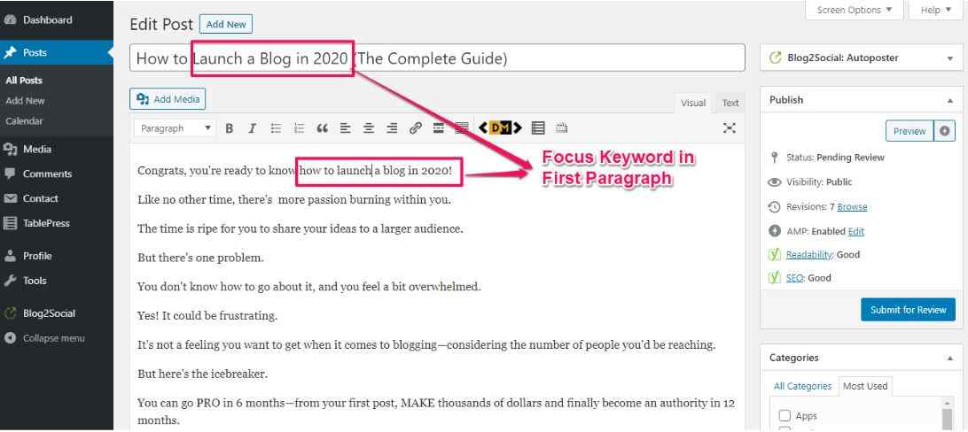 WordPress SEO 50 Actionable Tips to Rank on Google's First Page in Less Than 50 Days Focus Keyword on first paragraph